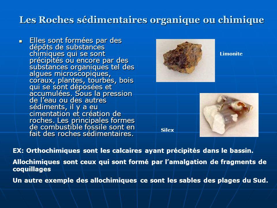 Les Roches sédimentaires organique ou chimique
