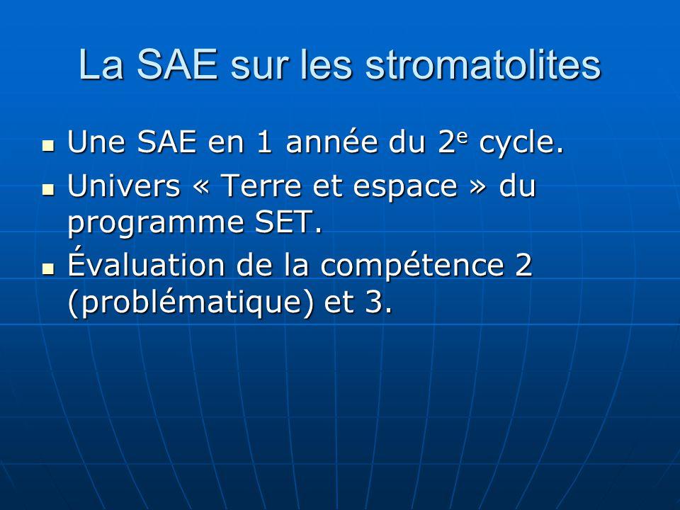 La SAE sur les stromatolites