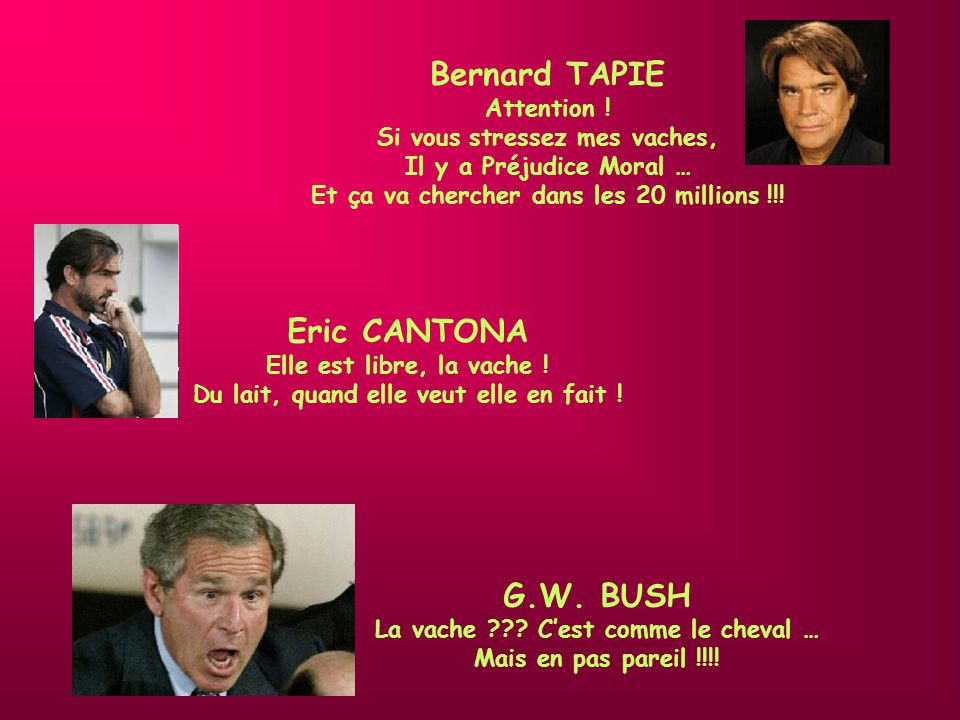 Bernard TAPIE Eric CANTONA G.W. BUSH