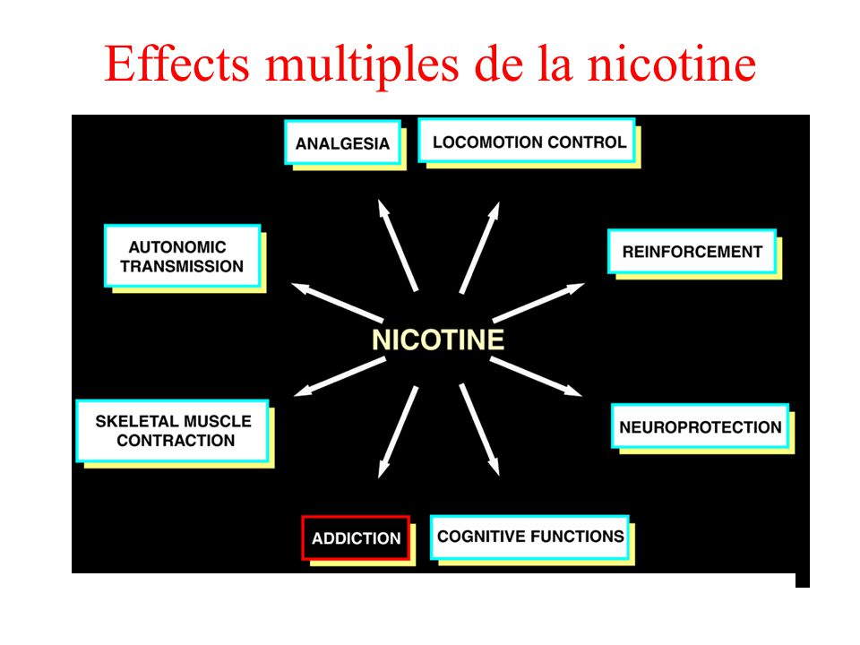 Effects multiples de la nicotine