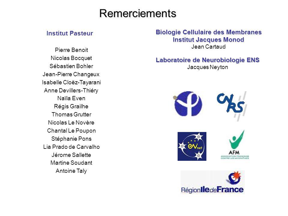 Remerciements Biologie Cellulaire des Membranes Institut Pasteur