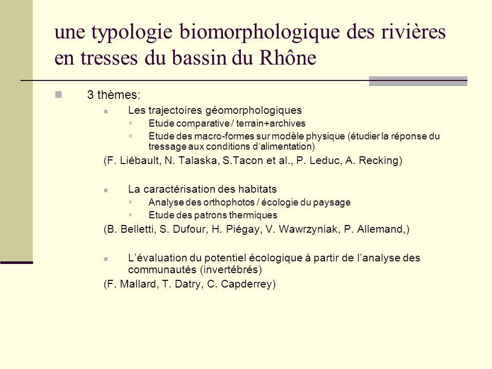 une typologie biomorphologique des rivières en tresses du bassin du Rhône