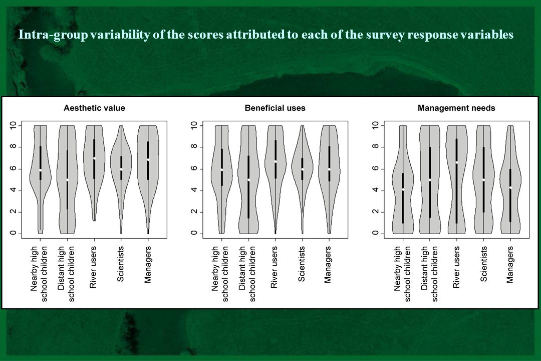 Intra-group variability of the scores attributed to each of the survey response variables