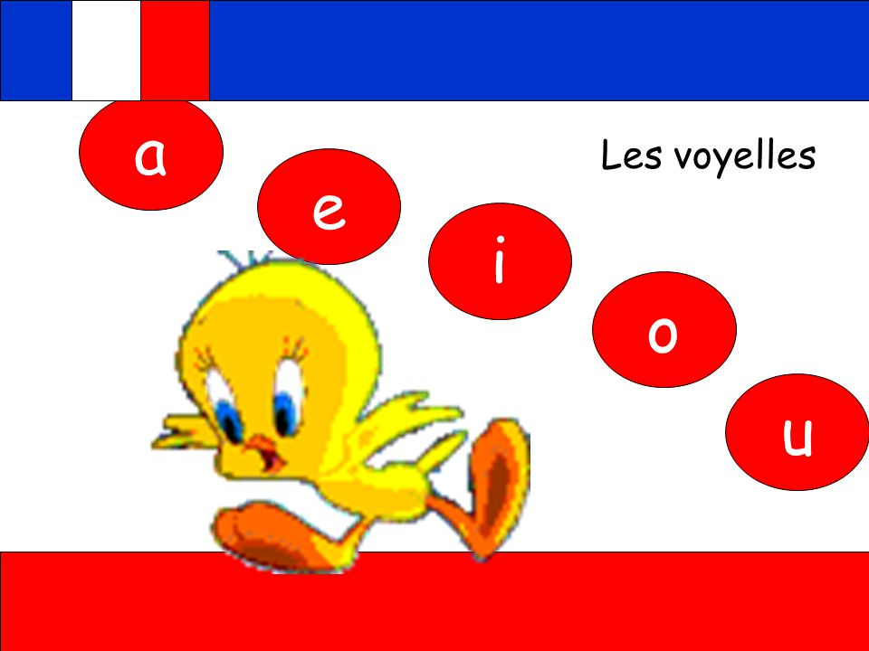 a Les voyelles e i o u Click on the bird to hear the letters