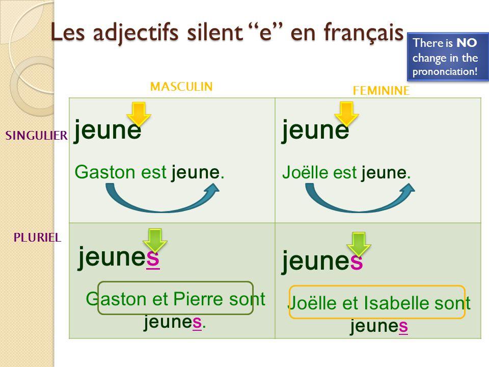 Les adjectifs silent e en français
