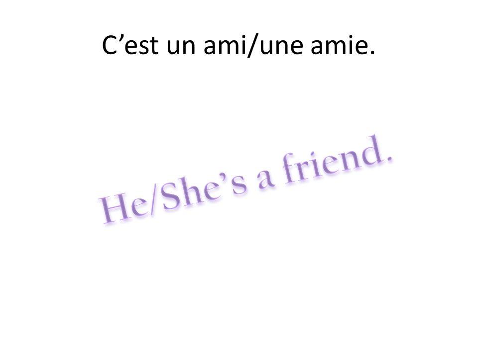 C'est un ami/une amie. He/She's a friend.