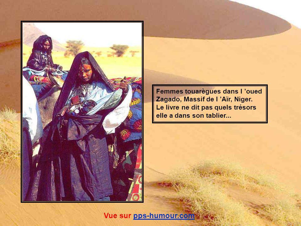 Vue sur pps-humour.com Femmes touarègues dans l 'oued
