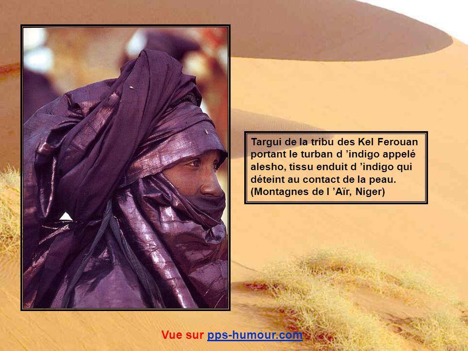 Vue sur pps-humour.com Targui de la tribu des Kel Ferouan