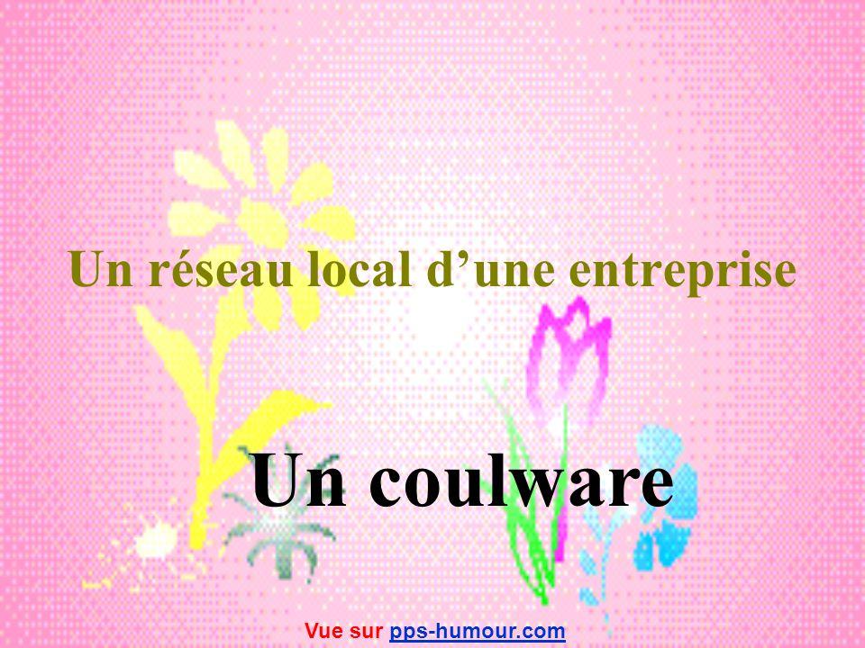Un réseau local d'une entreprise