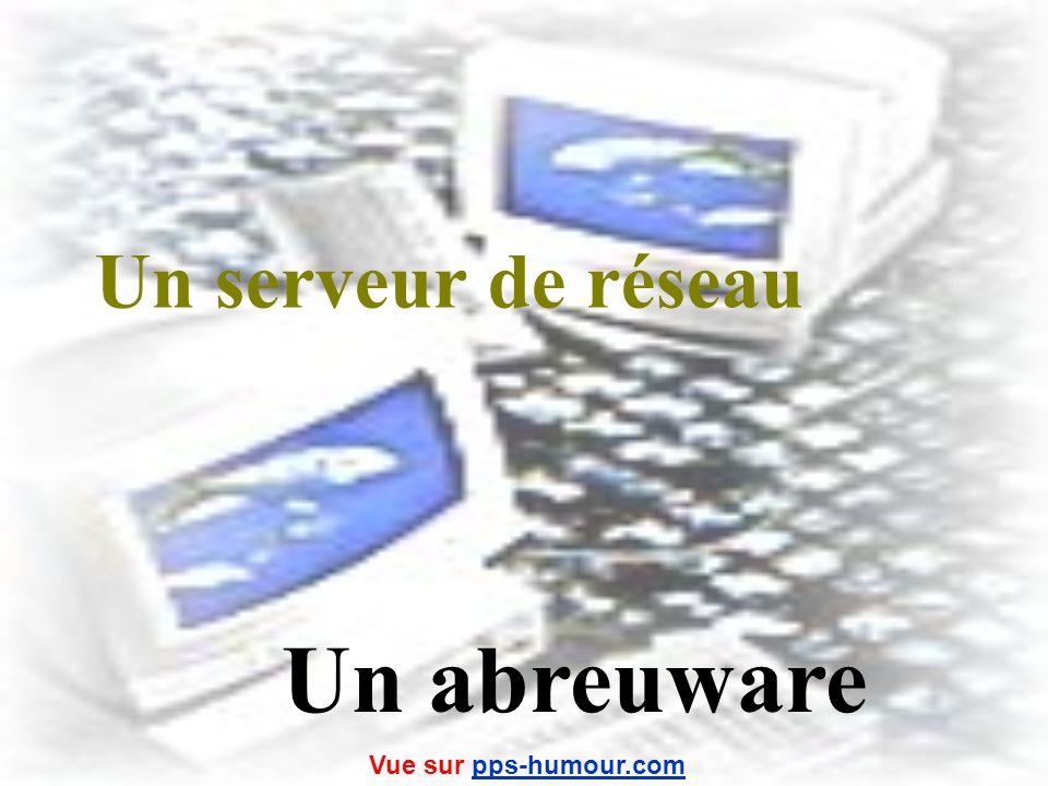 Un serveur de réseau Un abreuware Vue sur pps-humour.com