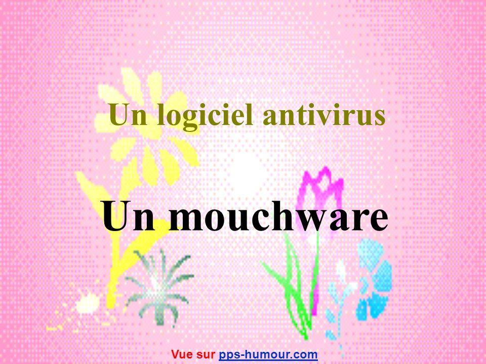 Un logiciel antivirus Un mouchware Vue sur pps-humour.com
