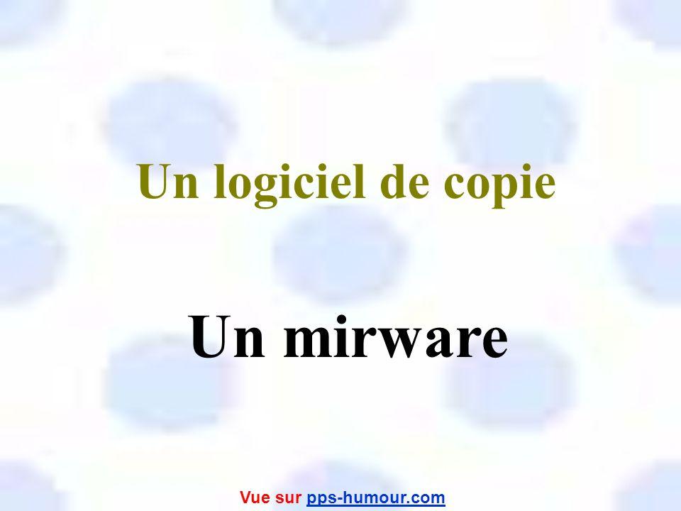 Un logiciel de copie Un mirware Vue sur pps-humour.com
