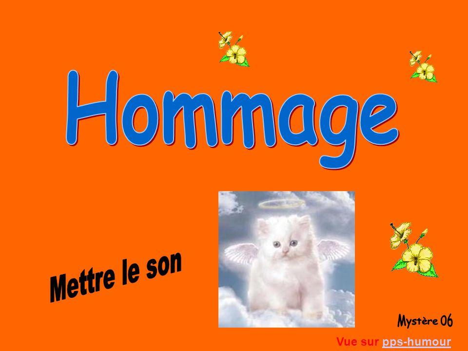 Hommage Mettre le son Mystère 06 Vue sur pps-humour