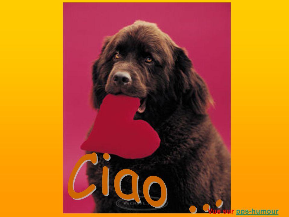 Ciao ... Vue sur pps-humour