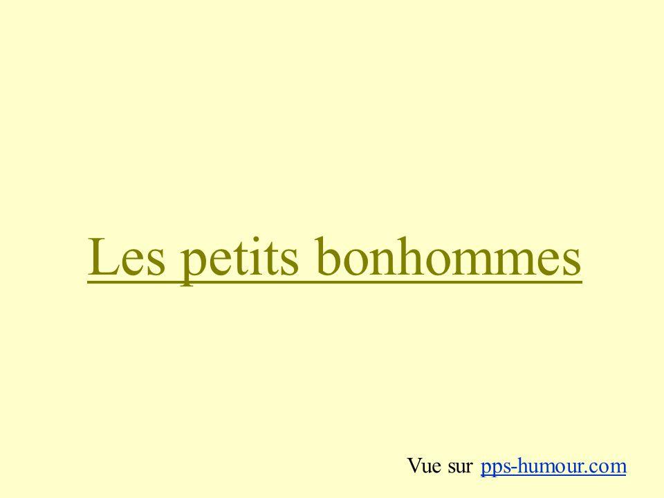 Les petits bonhommes Vue sur pps-humour.com