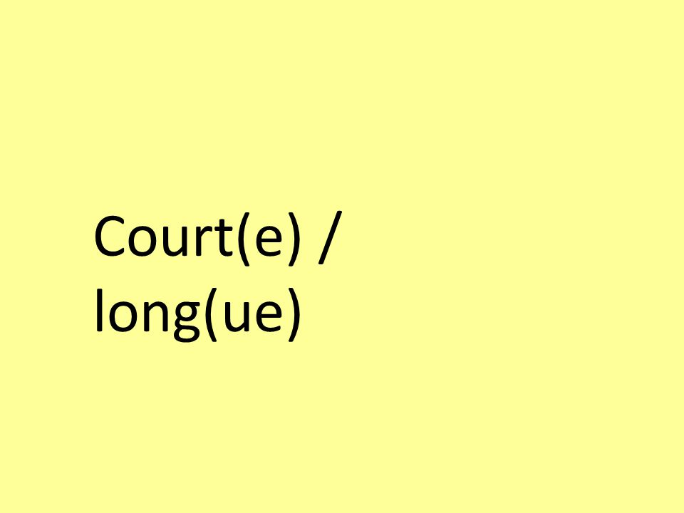 Court(e) / long(ue)