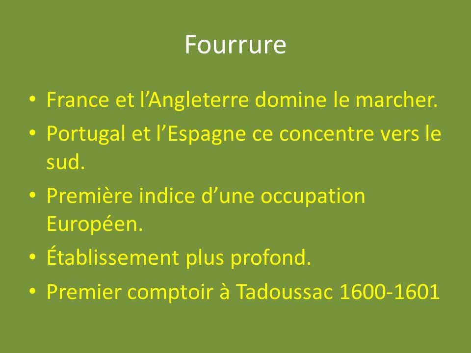 Fourrure France et l'Angleterre domine le marcher.