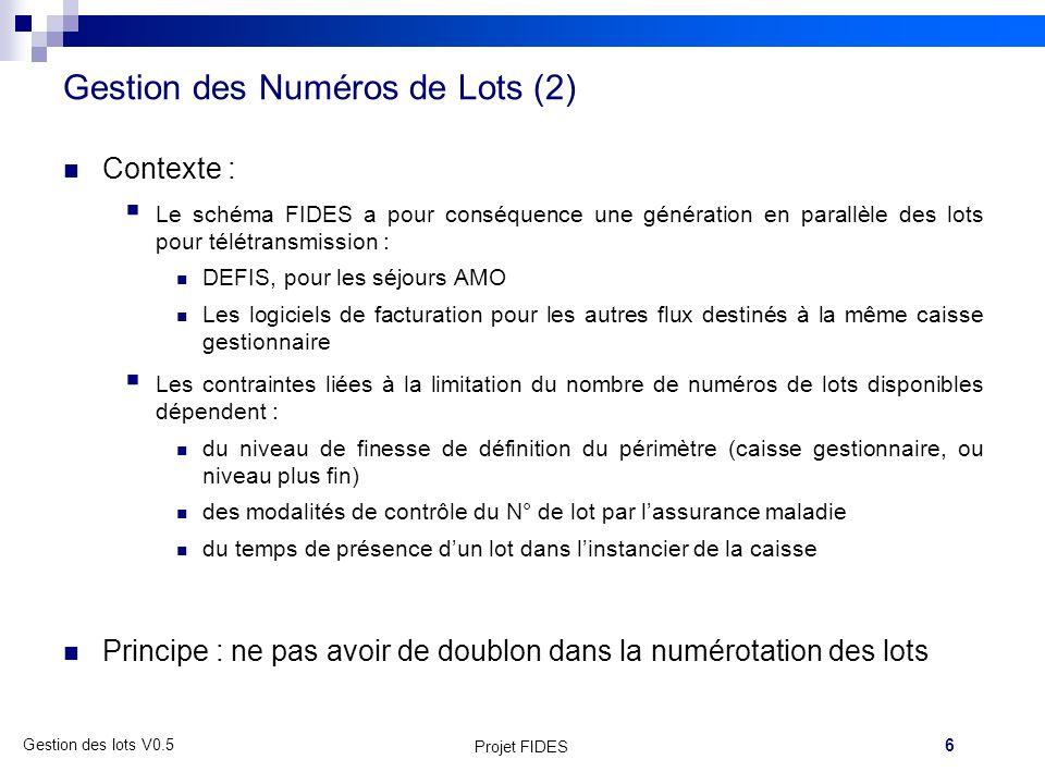 Gestion des Numéros de Lots (2)