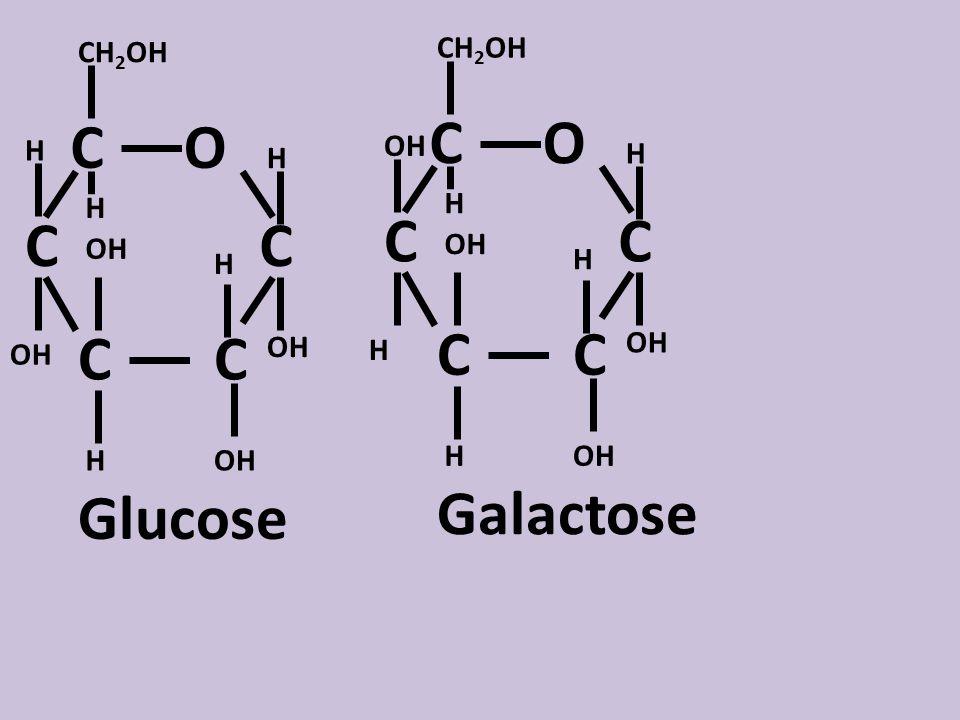 C O OH H CH2OH Glucose C O OH H CH2OH Galactose