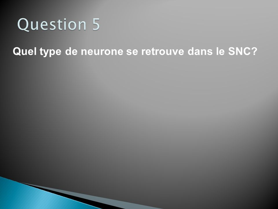 Question 5 Quel type de neurone se retrouve dans le SNC