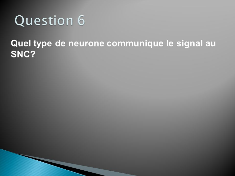 Question 6 Quel type de neurone communique le signal au SNC