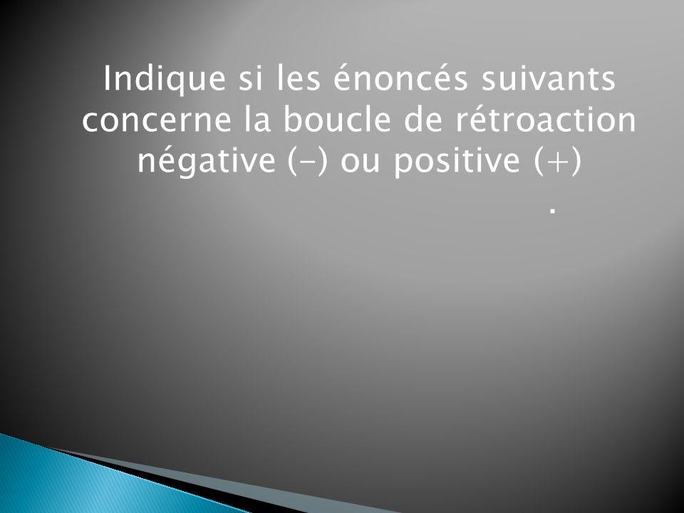 Indique si les énoncés suivants concerne la boucle de rétroaction négative (-) ou positive (+)