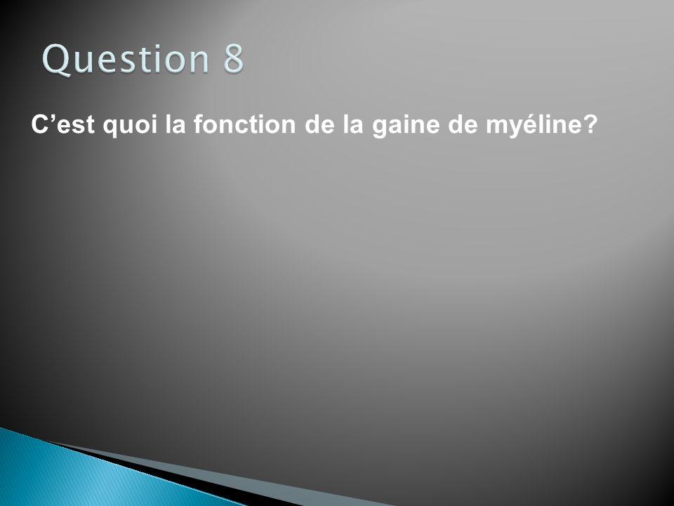 Question 8 C'est quoi la fonction de la gaine de myéline