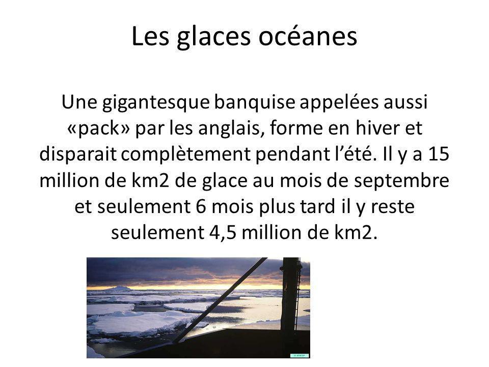 Les glaces océanes