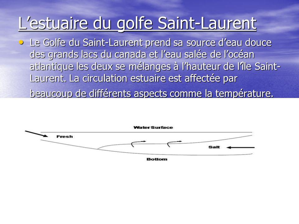 L'estuaire du golfe Saint-Laurent