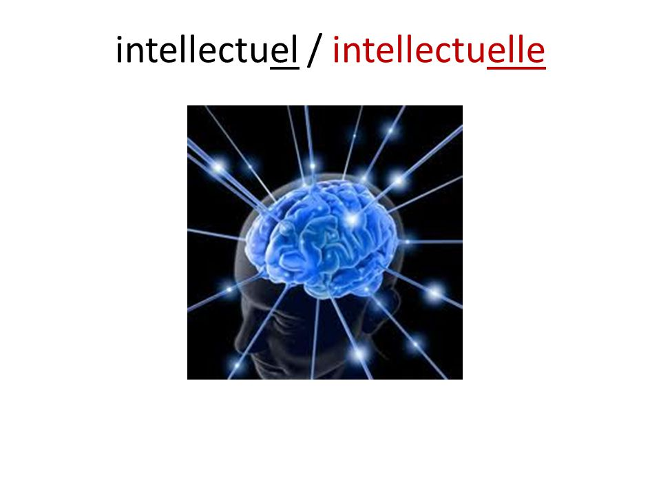 intellectuel / intellectuelle