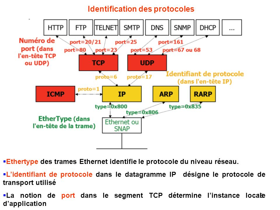 Identification des protocoles