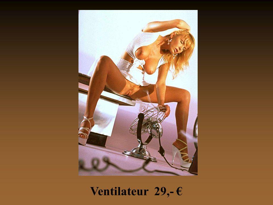 Ventilateur 29,- €