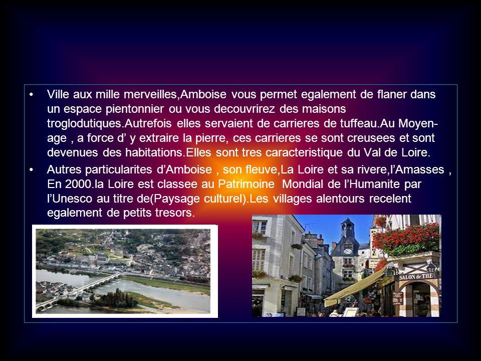 Ville aux mille merveilles,Amboise vous permet egalement de flaner dans un espace pientonnier ou vous decouvrirez des maisons troglodutiques.Autrefois elles servaient de carrieres de tuffeau.Au Moyen-age , a force d' y extraire la pierre, ces carrieres se sont creusees et sont devenues des habitations.Elles sont tres caracteristique du Val de Loire.