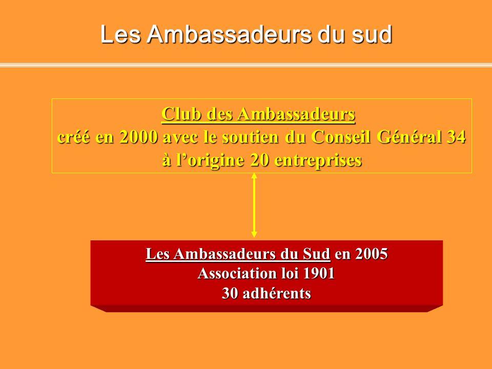 Les Ambassadeurs du sud
