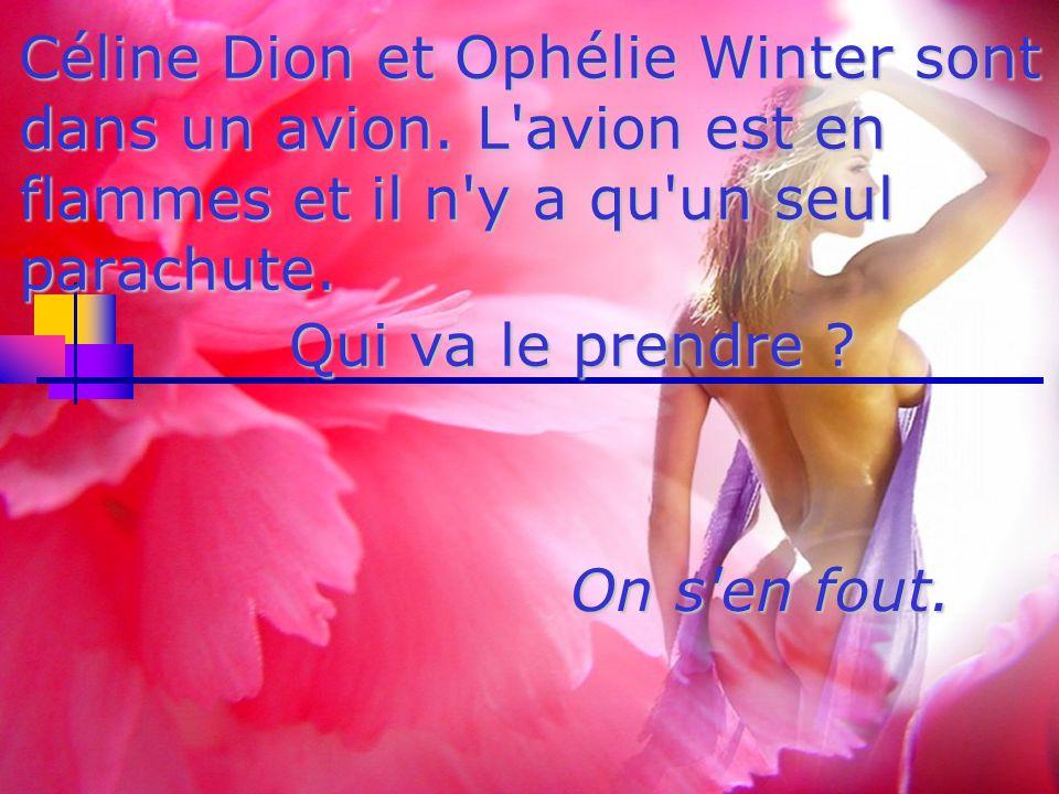 Céline Dion et Ophélie Winter sont dans un avion