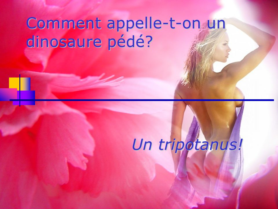Comment appelle-t-on un dinosaure pédé