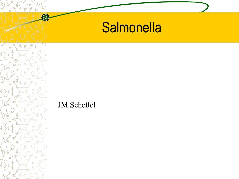 Salmonella JM Scheftel