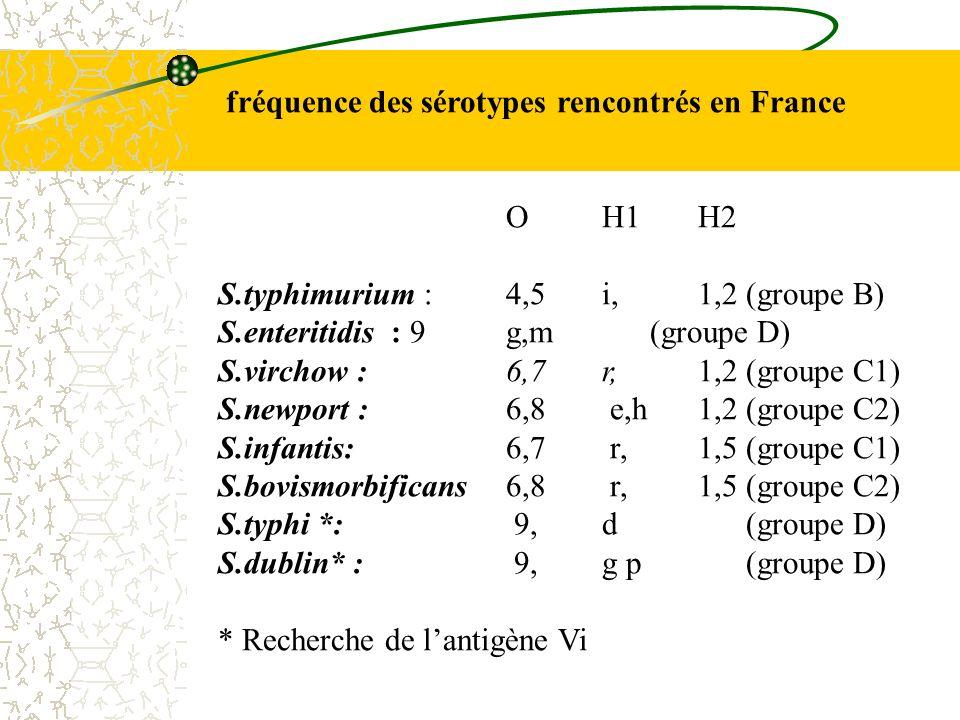fréquence des sérotypes rencontrés en France