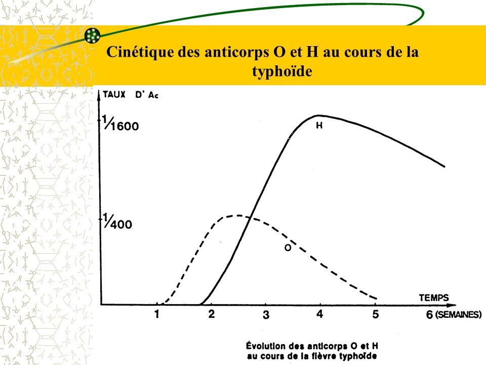Cinétique des anticorps O et H au cours de la