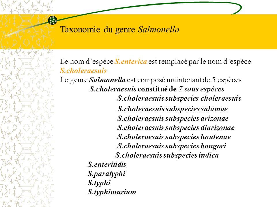 Taxonomie du genre Salmonella