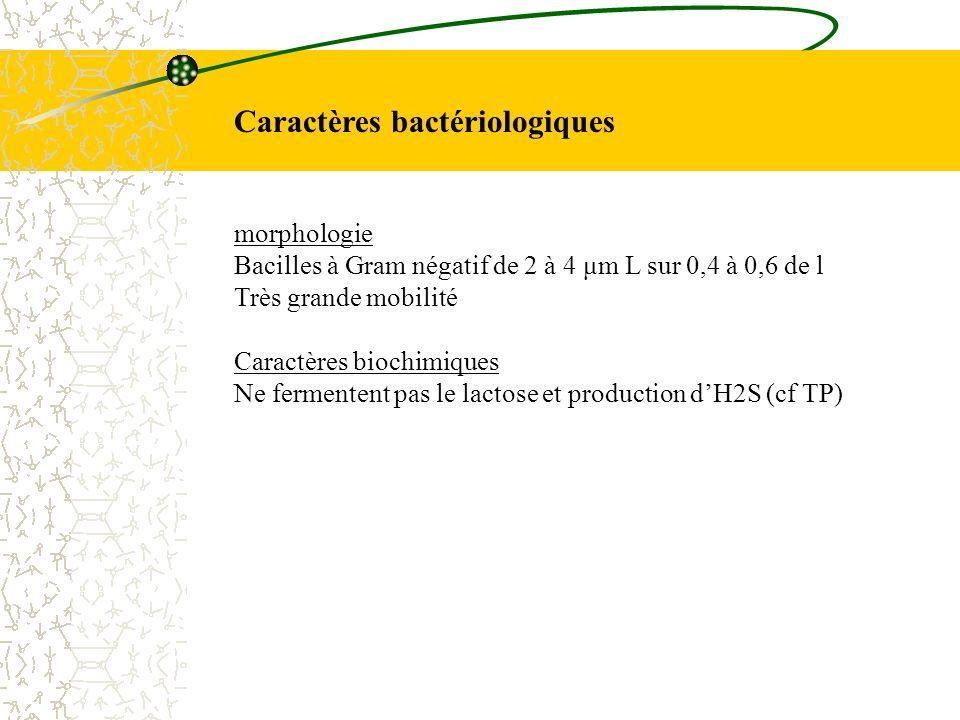 Caractères bactériologiques