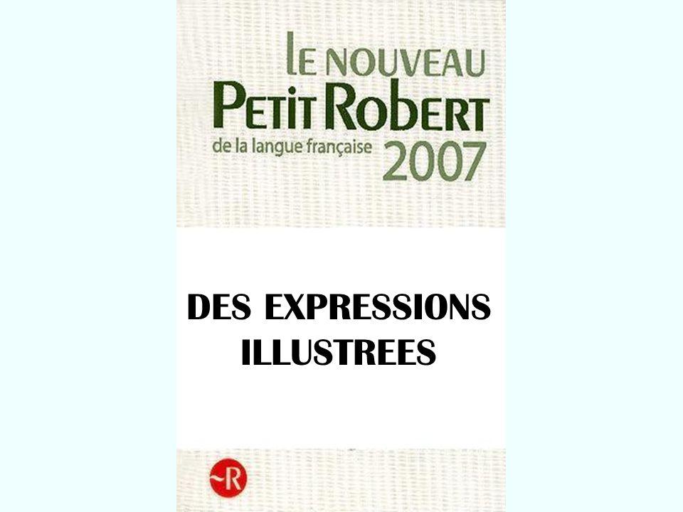 DES EXPRESSIONS ILLUSTREES