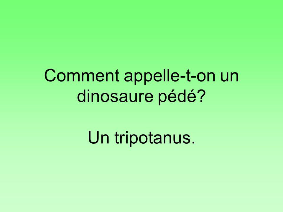 Comment appelle-t-on un dinosaure pédé Un tripotanus.