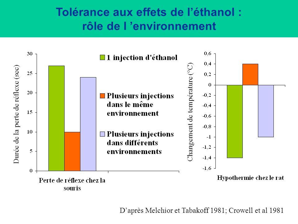 Tolérance aux effets de l'éthanol : rôle de l 'environnement