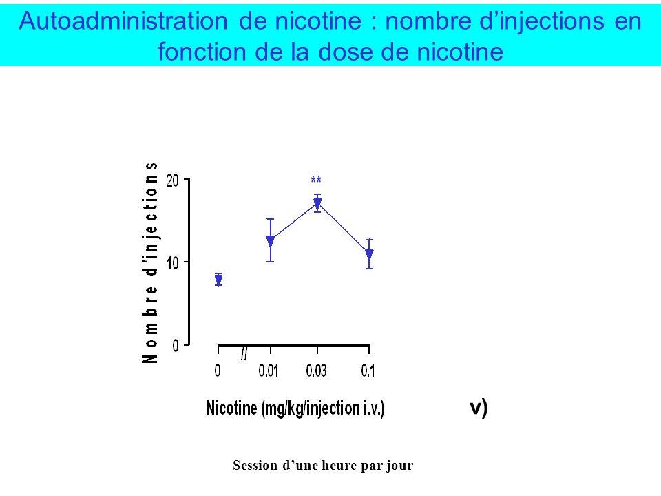 Autoadministration de nicotine : nombre d'injections en fonction de la dose de nicotine