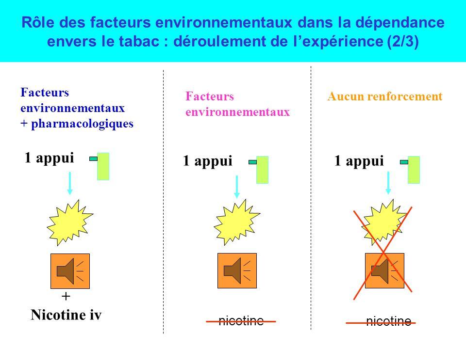 Rôle des facteurs environnementaux dans la dépendance envers le tabac : déroulement de l'expérience (2/3)