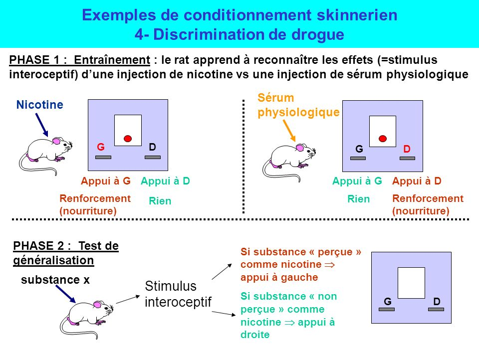 Exemples de conditionnement skinnerien 4- Discrimination de drogue