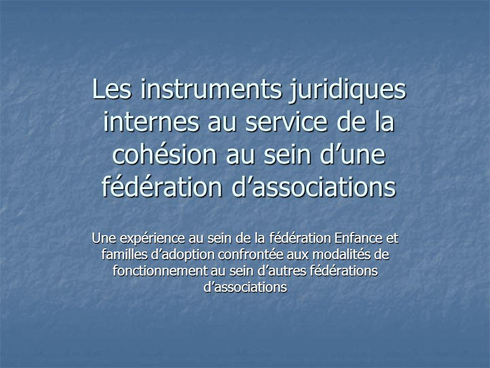 Les instruments juridiques internes au service de la cohésion au sein d'une fédération d'associations