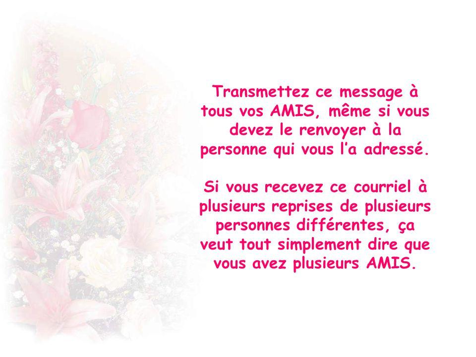 Transmettez ce message à tous vos AMIS, même si vous devez le renvoyer à la personne qui vous l'a adressé.