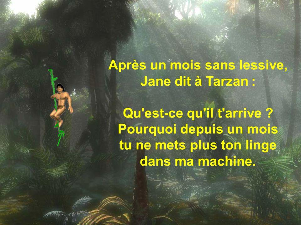 Après un mois sans lessive, Jane dit à Tarzan :